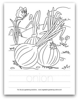 97 best images about Kids' Printable Garden Worksheets