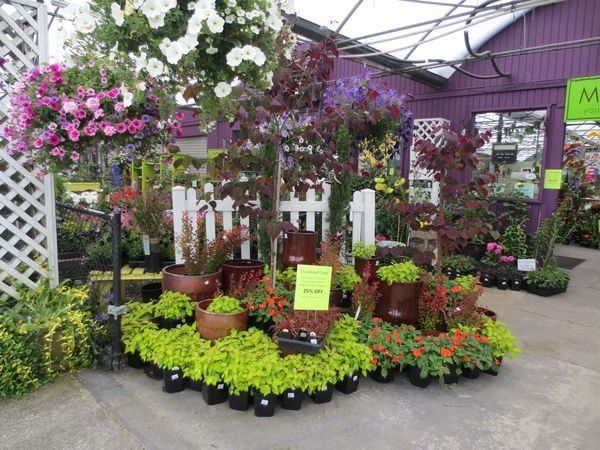 267 Best Images About Garden Center Display Ideas On Pinterest