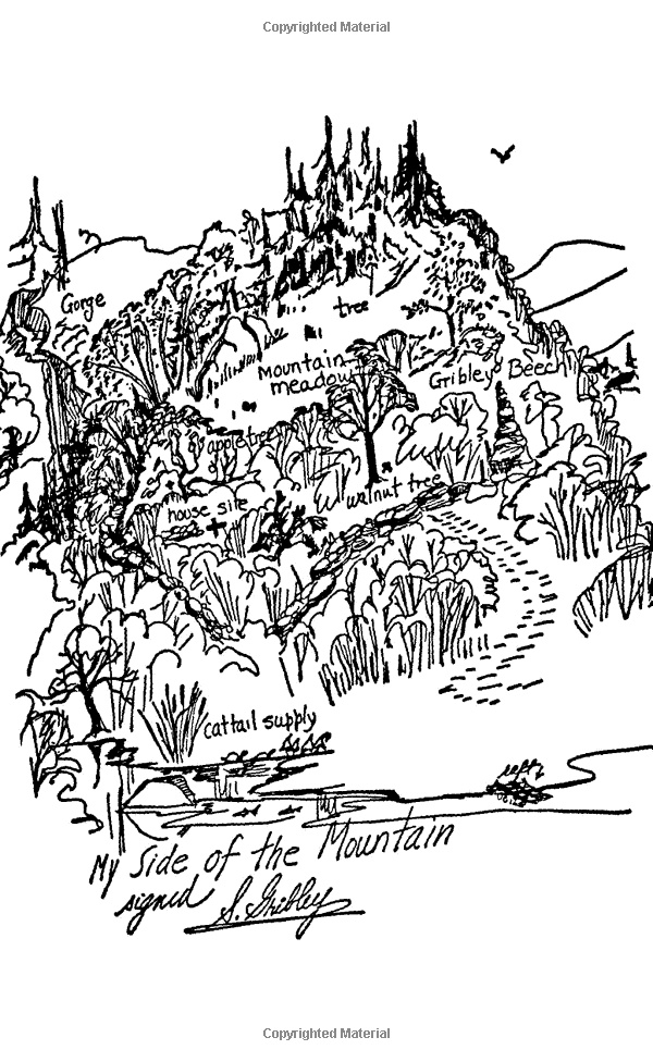 My Side of the Mountain illustration from the book by Jean
