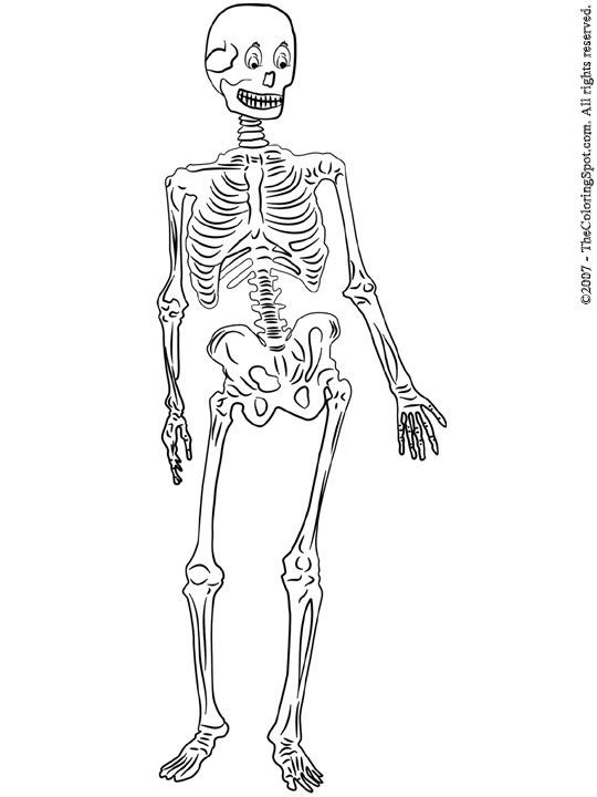 skeleton coloring pages-skeleton--printable-coloring-pages