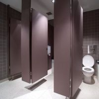 ceiling mount toilet cubicles - Google Search | Washroom ...
