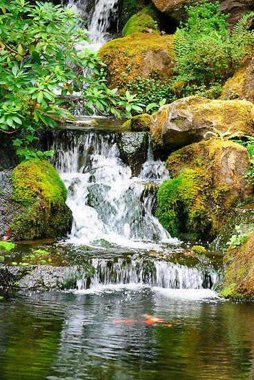 Best 25 Pond waterfall ideas on Pinterest
