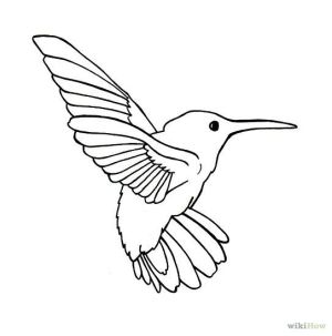 bird drawing hummingbird line birds outline flying simple drawings outlines easy draw clipart tattoo cliparts hummingbirds clip ink clipartpanda getdrawings