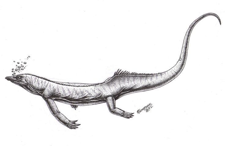 Largocephalosaurus polycarpon by Xiphactinus on DeviantArt