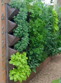 Eggeth Home Reference Vertical vegetable garden trellis ...