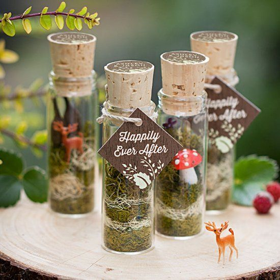25 Best Ideas About Terrarium Wedding Favor On Pinterest