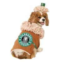 25+ great ideas about Cute dog costumes on Pinterest ...