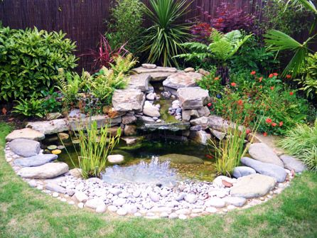 25 Best Ideas About Garden Ponds On Pinterest Ponds Backyard