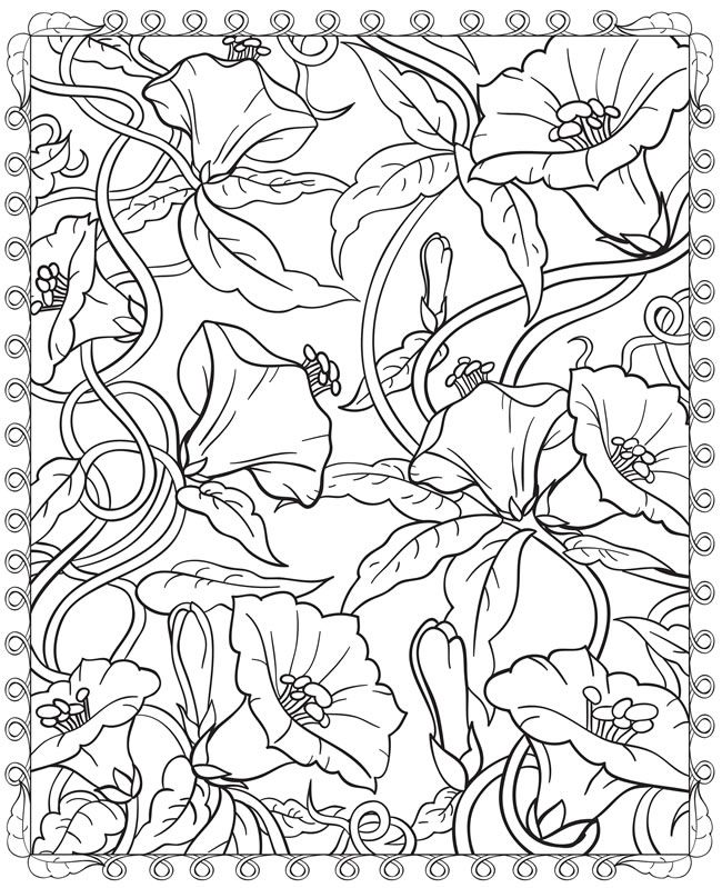 260 best images about Pen/Ink Floral on Pinterest