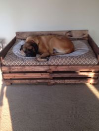 Best Homemade Dog Bed ideas on Pinterest