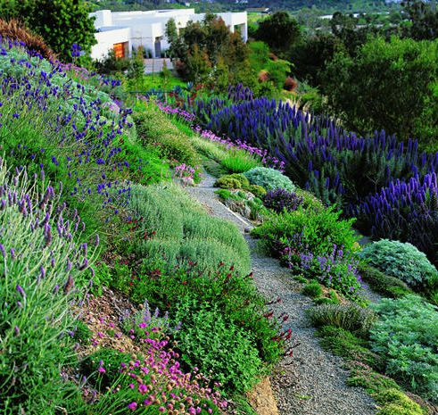 25 Best Ideas About Hillside Landscaping On Pinterest Steep