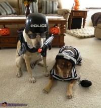 125 best Pets images on Pinterest