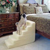 1000+ ideas about Dog Stairs on Pinterest | Dog Ramp, Dog ...