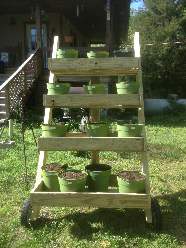 Making Succulent Garden