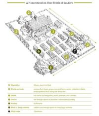1/10 of an acre layout from The Backyard Homestead: Small ...