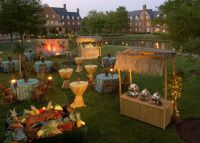 24 best images about Hawaiian Back Yard Luau Ideas on
