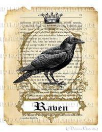 17 Best ideas about Halloween Raven on Pinterest   Ravens ...