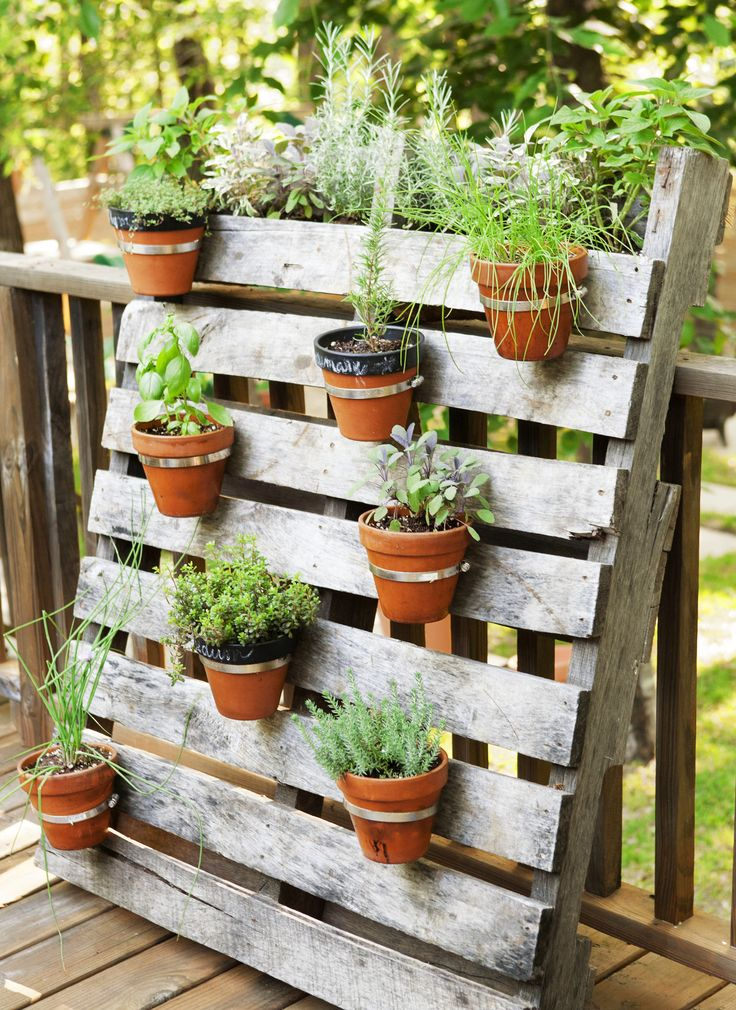 25 Best Ideas About Pallet Gardening On Pinterest Pallets