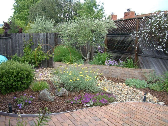 A Lawnless Garden With Seasonal Interest And Plenty Of