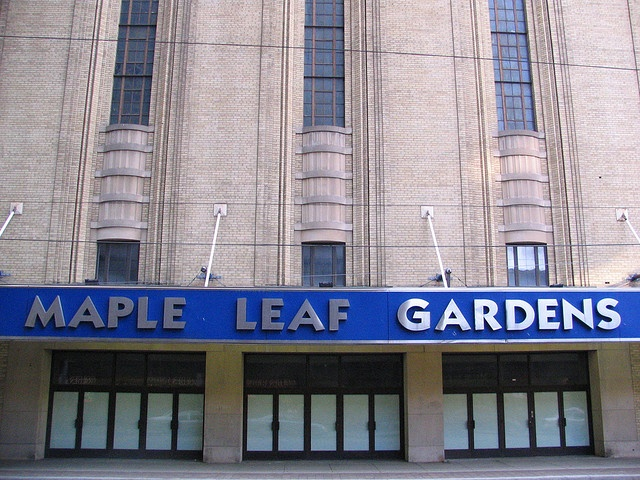 17 Best ideas about Toronto Maple Leafs on Pinterest