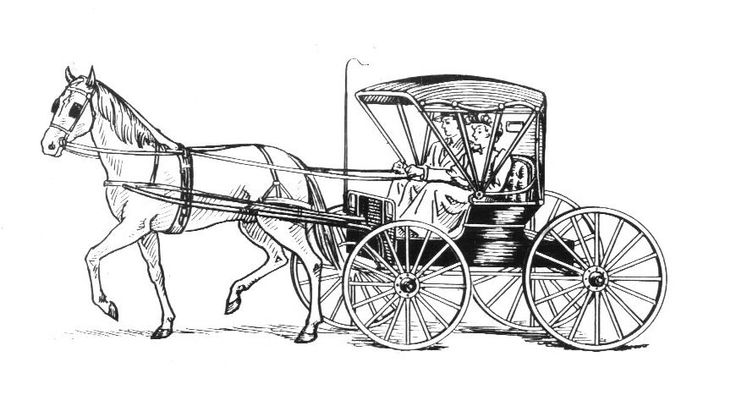 90 best images about Horses and Horse Buggy on Pinterest