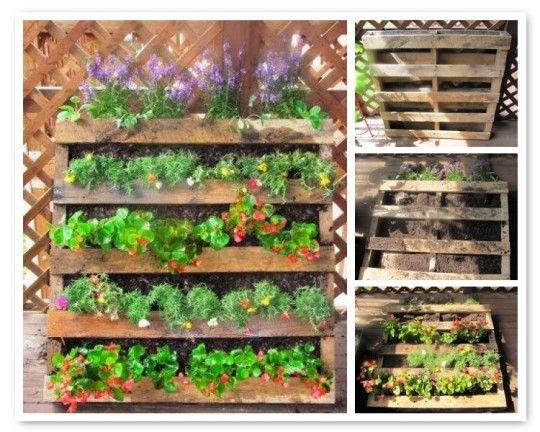 146 Best Images About Community Garden On Pinterest Gardens