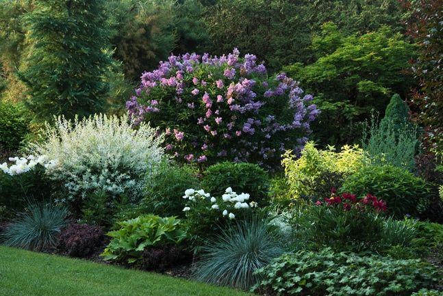 Perennial Gardens Beautiful Garden And Bedding Ideas Via