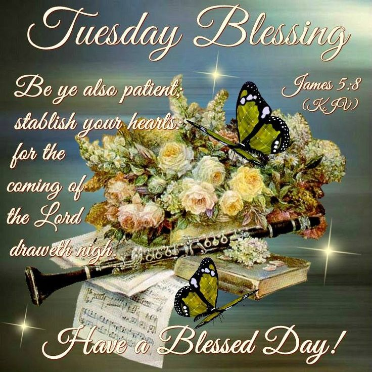 20 Best Images About Tuesday Blessings On Pinterest