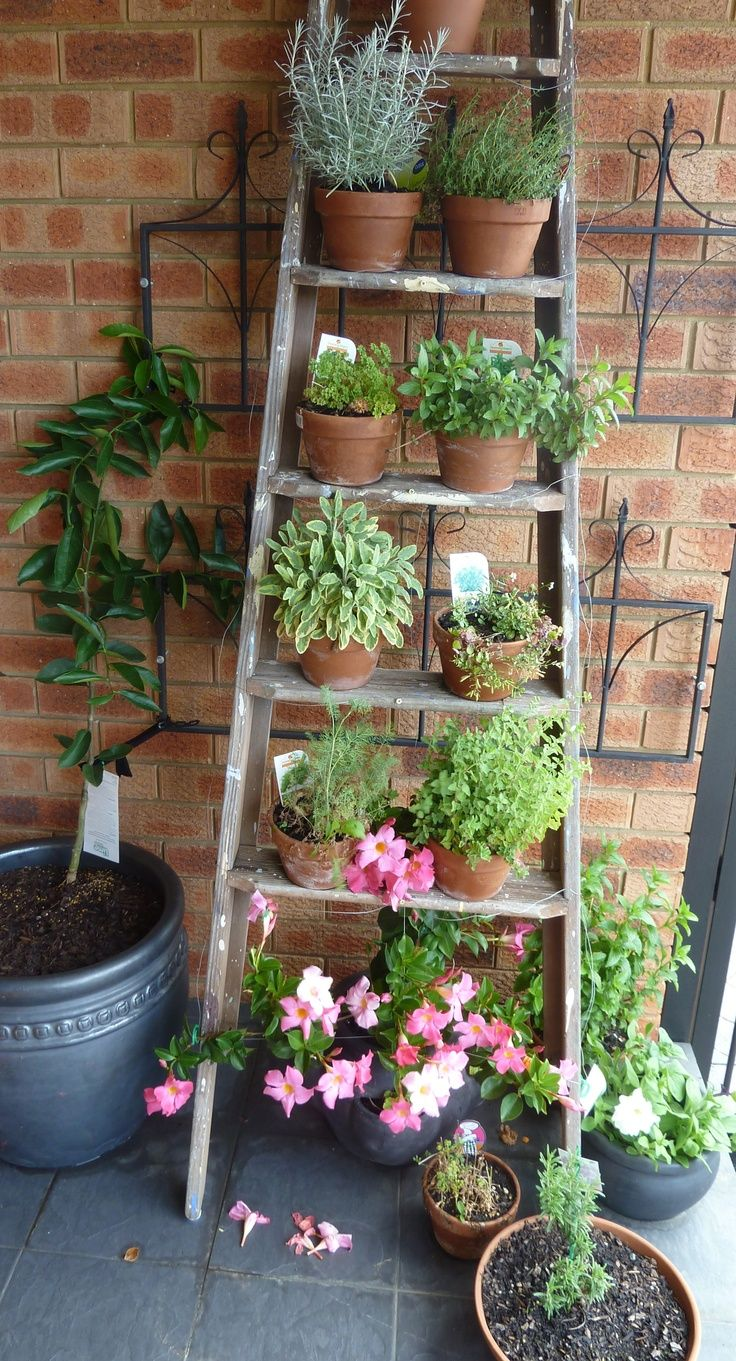 25 Best Ideas About Balcony Garden On Pinterest Small Balcony
