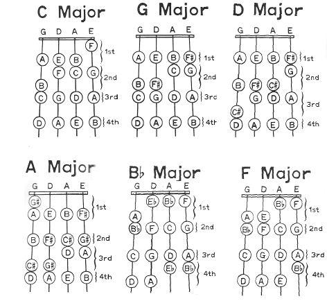 7 String Electric Guitar Steel Guitar Wiring Diagram ~ Odicis