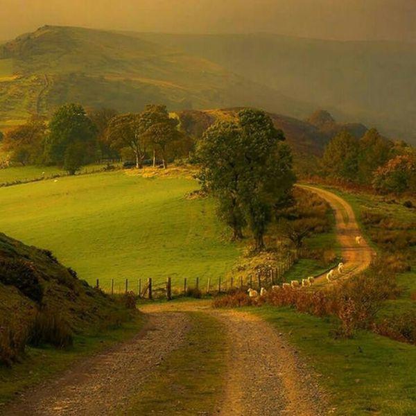 landscape - dream landscapes