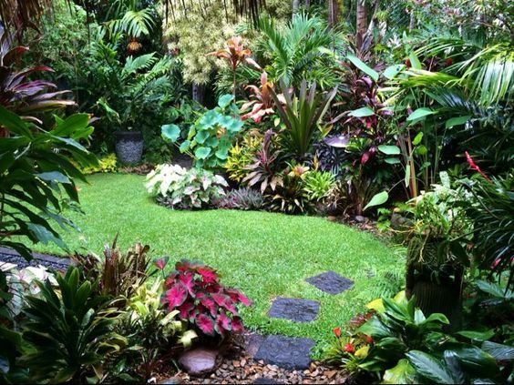 The 25 Best Ideas About Jungle Gardens On Pinterest Tropical