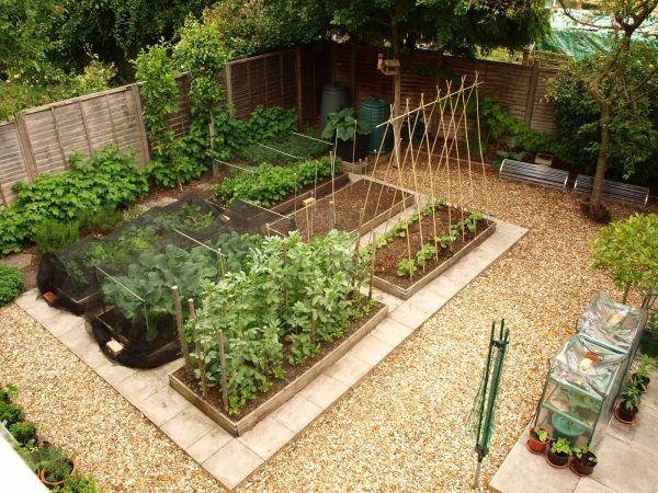 garten ideen gemusegarten anlegen pflanzplan | sichtschutz, Gartengestaltung