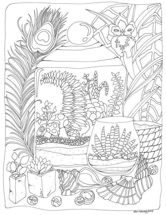 Terrarium succulent peacock feather & orchid coloring page