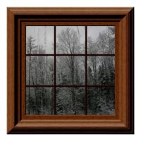 1000+ images about Fake Window Views on Pinterest ...