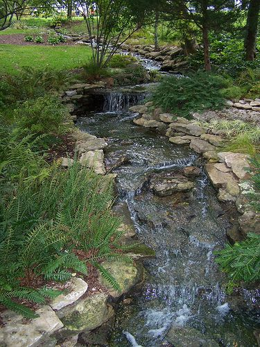 25 Best Ideas About Backyard Stream On Pinterest Garden Stream