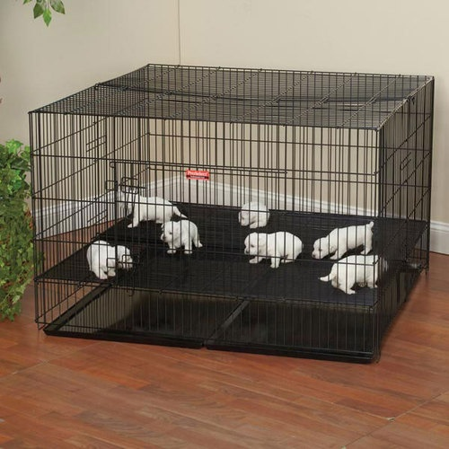 Large Puppy Playpen close spacing 48x48x30H Top  front
