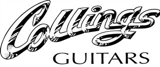 17 Best images about Guitar products logos on Pinterest