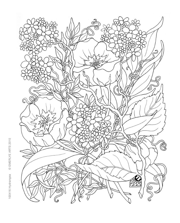 Inspirational coloring pages from Secret Garden, Enchanted