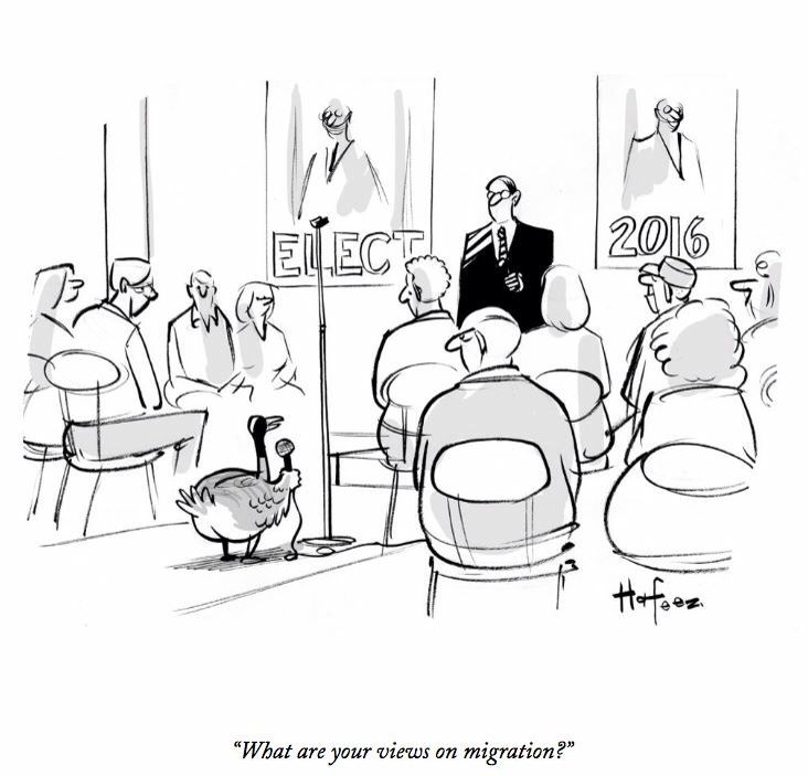 17 Best images about New Yorker Cartoons on Pinterest