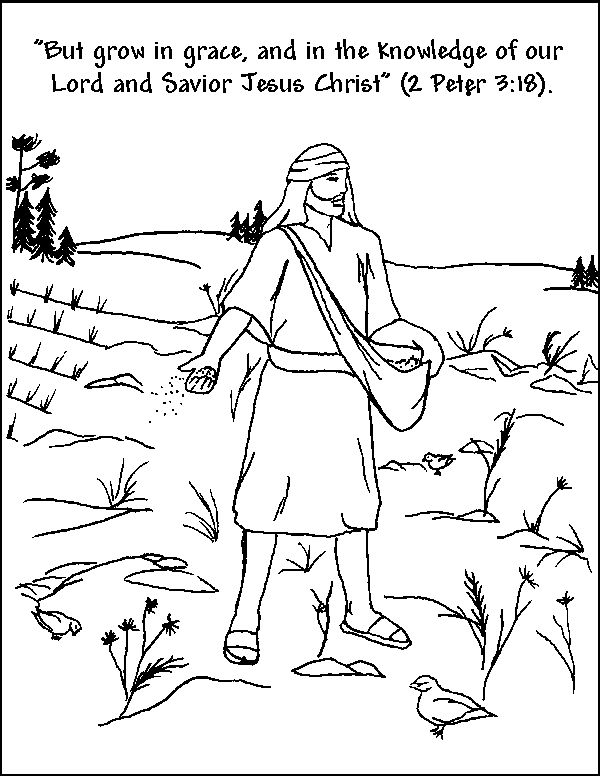 47 best images about Parable of the Sower; Matthew 13:1-23