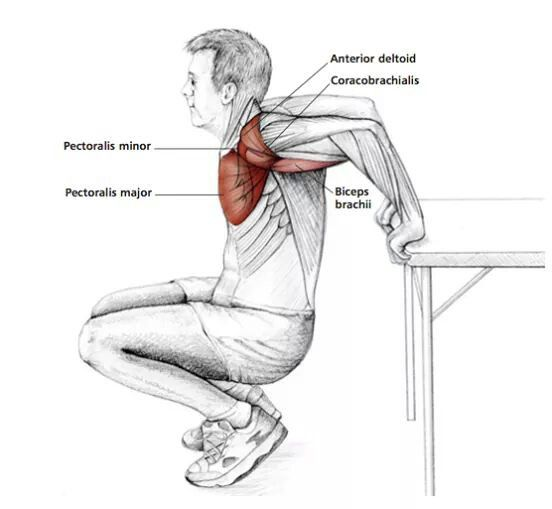 78 Best images about SHOULDER THERAPy on Pinterest