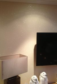 White Glitter Paint For Walls - disney specialty finishes ...