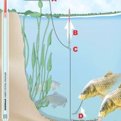 3 1 Z Rig Diagram Rover 75 Srs Wiring How To Fish The Lift Method For Carp, Tench And Bream | Fishing On Float Pinterest Lakes, Dr ...