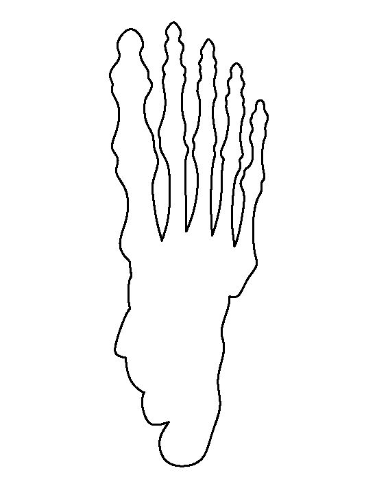 Skeleton foot pattern. Use the printable outline for