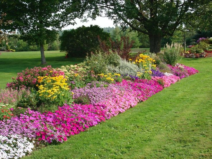 Best 20 Flower Bed Designs Ideas On Pinterest Front Flower Beds