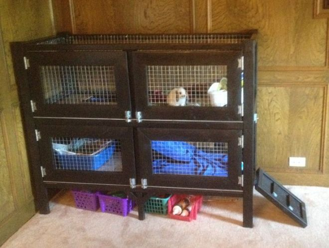 Do it yourself hedgehog cage two story rabbit hutch