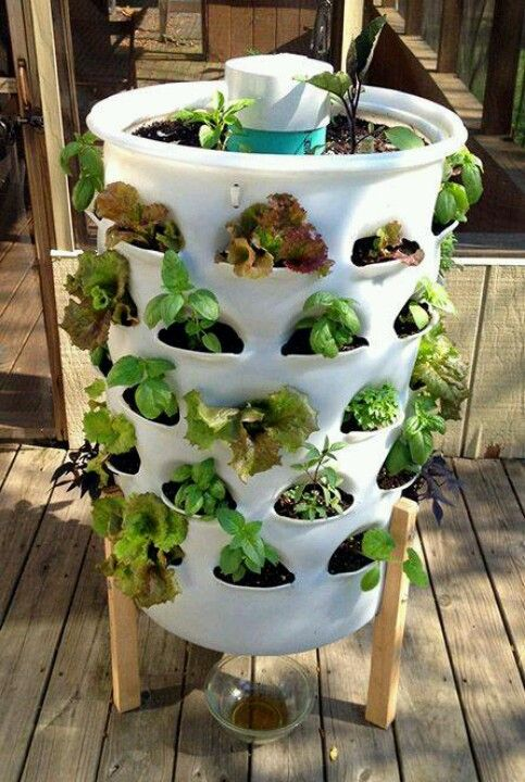 614 Best Images About Square Foot Gardening On Pinterest Gardens