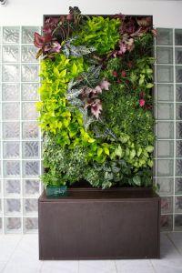 121 best Vertical Gardening images on Pinterest