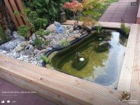 56 best Pond Ideas images on Pinterest